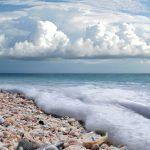 Sanibel-Florida-Shell-Beach
