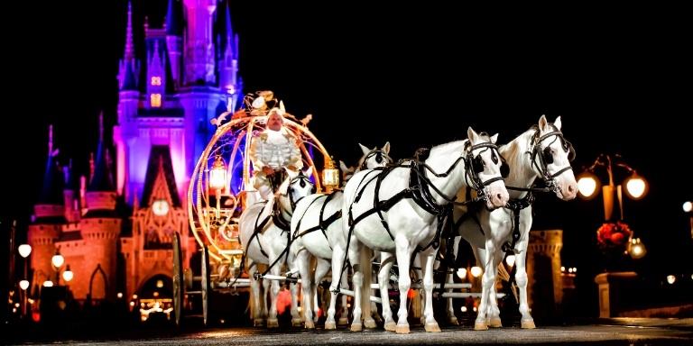 magic-kingdom-wedding-night-1-1476283873