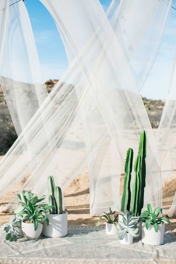 http://www.brides.com/gallery/the-cactus-is-the-new-trend-in-wedding-decor