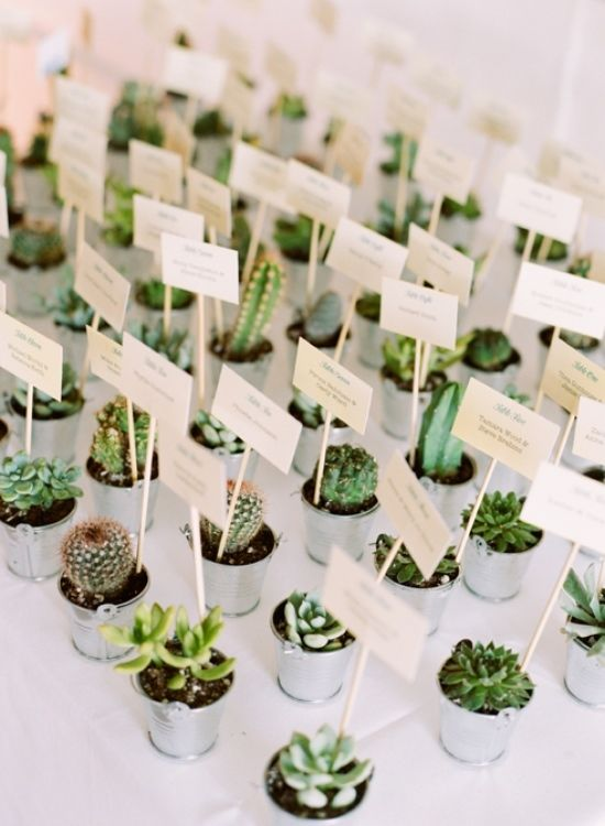 http://www.mywedding.com/wedding-ideas/colors-themes/everything-you-need-for-a-cool-cactus-wedding/