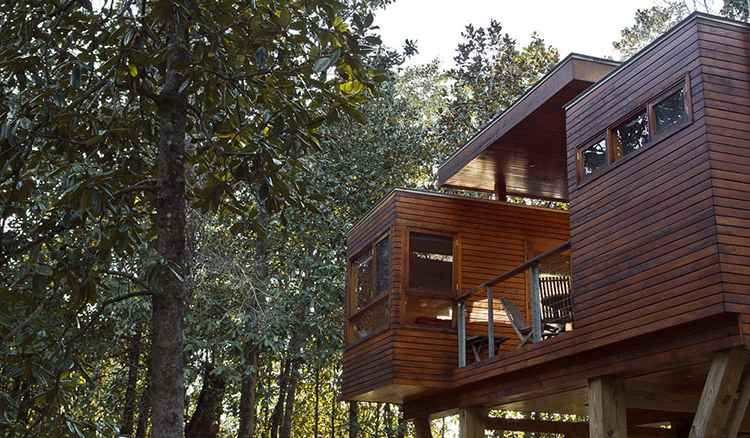 Stay in a Modern Treehouse at Coldwater Gardens in Milton, FL | featured on I Do Y'all