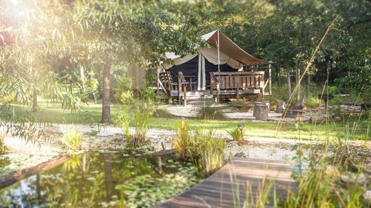 Glamping tents at Coldwater Gardens in Florida are perfect for a wedding weekend!